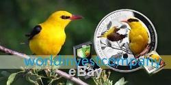 Niue 2016 $ 1 Série Oriole Commun Le Monde Fascinant Des Oiseaux Nouveau